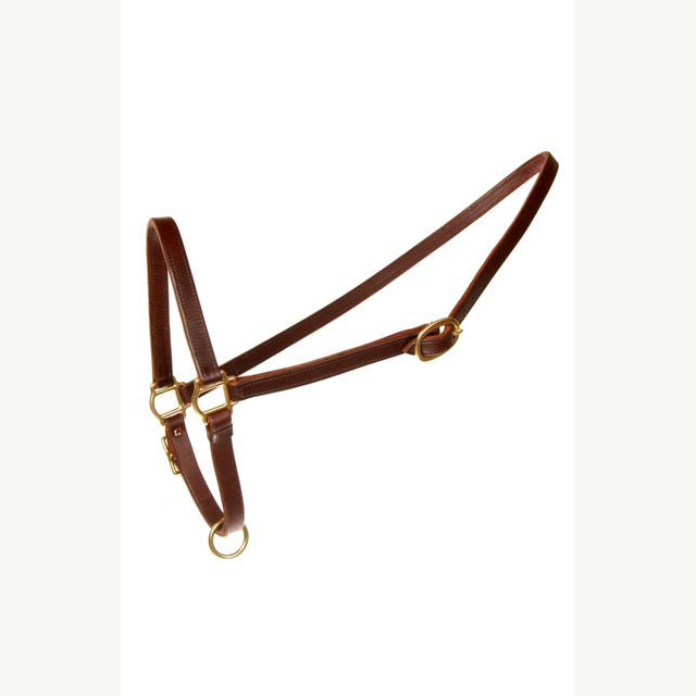 LEATHER GROOMING HALTER