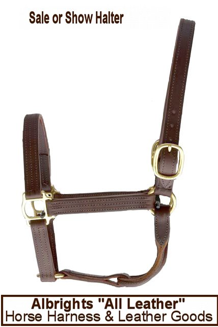 Sale or Show Halter