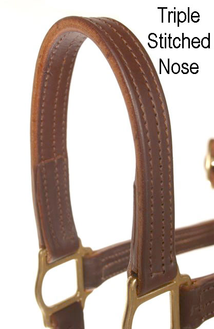 LEATHER SALE/SHOW HALTER - Click Image to Close