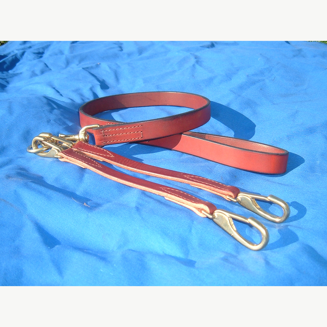 All Leather Dog Leash